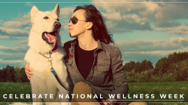 Celebrate-National-Wellness-Week-5babf79518d4c